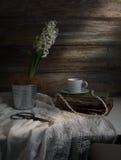 Stillleben mit Hyazinthe, Tasse Kaffee, alte Bücher, Scheren auf einem Hintergrund von rauen hölzernen Wänden weinlese Lizenzfreie Stockfotografie