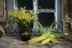 Stillleben mit Mais und wilden Blumen Stockfotos