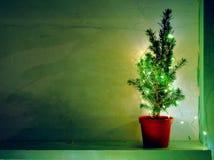 Stillleben mit natürlichem Nadelbaum mit Lichtern und Kopienraum lizenzfreie stockfotos