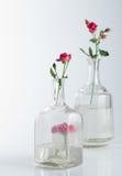 Stillleben mit Rosen auf Weiß Stockfotos