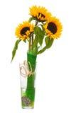 Stillleben mit Sonnenblumen im Glasvase lokalisiert auf Weiß Lizenzfreie Stockfotos