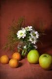 Stillleben mit Tangerinen und Äpfeln Stockbilder