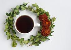Stillleben mit Tasse Kaffee und Blumen Zweige von Buchsbaum und Blumen tagetes Lizenzfreies Stockbild