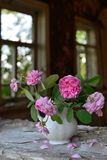 Stillleben mit verblaßten Rosen lizenzfreies stockbild