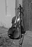 Stillleben mit Violine lizenzfreies stockfoto