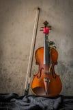 Stillleben mit Violine und Rosen Stockfotografie