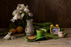 Stillleben mit weißer Iris Lizenzfreie Stockfotos