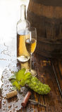 Stillleben mit Weißwein Lizenzfreie Stockbilder