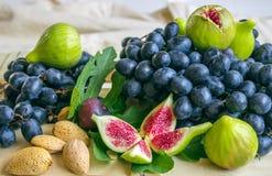 Stillleben von frischen bunten Früchten Bündel blaue Trauben, gree Lizenzfreies Stockbild