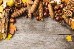 Stillleben von Herbstbestandteilen lizenzfreie stockfotos