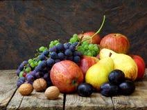 Stillleben von Herbstfrüchten: Trauben, Äpfel, Birnen, Pflaumen, Nüsse Stockfotografie