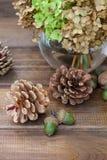 Stillleben von Kiefernkegeln, von Walnüssen, von Eicheln und von Vase mit Grüns Lizenzfreie Stockfotografie
