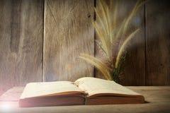 Stilllebenblumen-Fuchsschwanzunkraut und altes Buch am Morgen beleuchten auf hölzernem Hintergrund Stockfoto