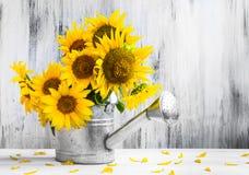 Stilllebenblumenstrauß-Sonnenblumengießkanne Stockbild