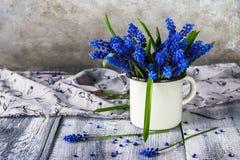 Stilllebenblumenstraußfrühling blüht Blau Lizenzfreies Stockfoto