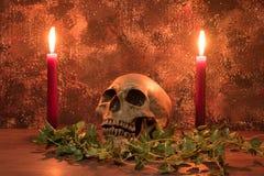 Stilllebenmalereiphotographie mit dem menschlichem Schädel, Kerze und dri Stockfoto