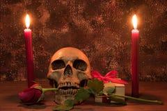 Stilllebenmalereiphotographie mit dem menschlichen Schädel, Geschenk, stieg Stockfotografie