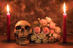 Stilllebenmalereiphotographie mit dem menschlichen Schädel, rosafarben und candl Stockfotografie