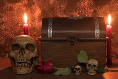 Stilllebenmalereiphotographie mit dem menschlichen Schädel, stieg, leuchtet a durch Lizenzfreies Stockbild