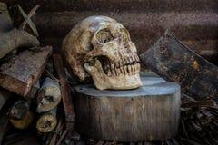 Stilllebenschädel und -brennholz Stockfotos