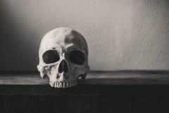 Stilllebenschwarzweißfotografie mit dem menschlichen Schädel auf Holz Lizenzfreie Stockbilder