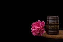 StillLife Imagem de Stock Royalty Free