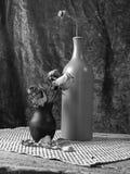 Stilllife blanco y negro Fotos de archivo libres de regalías