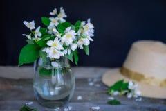 Stilllife karta z jaśminowymi kwiatami w szklanym słoju, oddzielne gałąź z kwiatami, płatki i słomiany kapelusz na drewnianym wie Obraz Royalty Free