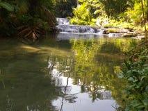 stillness foto de stock royalty free