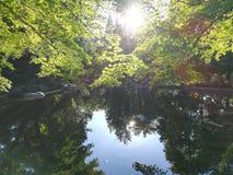 Stillness Speaks. Lithia Park, Ashland, Oregon stock images