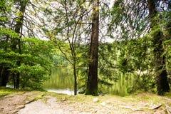 Stillsam bergsjö med reflexioner Fotografering för Bildbyråer
