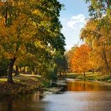 stillsam flod Fotografering för Bildbyråer