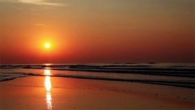 Stillsam guld- soluppgång över havet stock video