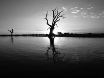 stillsam lake arkivfoton