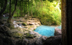 Stillsam och fridsam naturbakgrund av den härliga floden Royaltyfri Fotografi