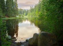 Stillsam skogsjösolnedgång arkivfoto