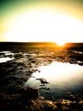 Stillsam soluppgång på grässlättar Arkivbilder