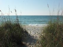 stillsam strand Fotografering för Bildbyråer