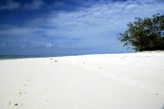 stillsam strand Arkivbilder
