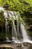 stillsam vattenfall royaltyfri fotografi