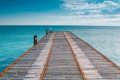 Stillsamt landskap med pir på havet royaltyfria bilder