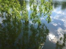 Stillsamt landskap på en sjö, med den vibrerande skyren Arkivfoton