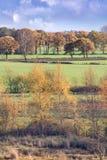 Stillsamt lantligt landskap i höst färgar, Turnhout, Belgien arkivfoto