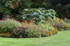 Stillsamt trädgårds- landskap royaltyfri foto
