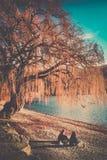 Stillstehen durch den See stockfotografie