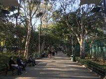Stillstehen in einer ruhigen Umwelt in Hong Kong Stockbild