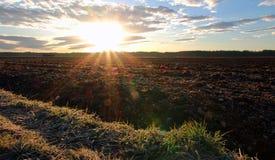 Stillstehendes Ackerland und helle Morgensonne Stockbild