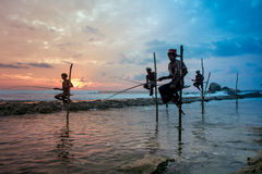 Stilt fisherman in Koggala, Sri Lanka Stock Photography