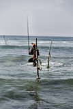 Stilt fishermen Royalty Free Stock Photography