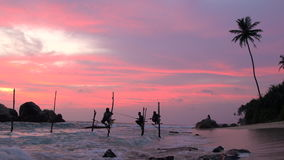 Stilt fishermen fishing with colourful sky at sunset, nr Galle, stock video footage